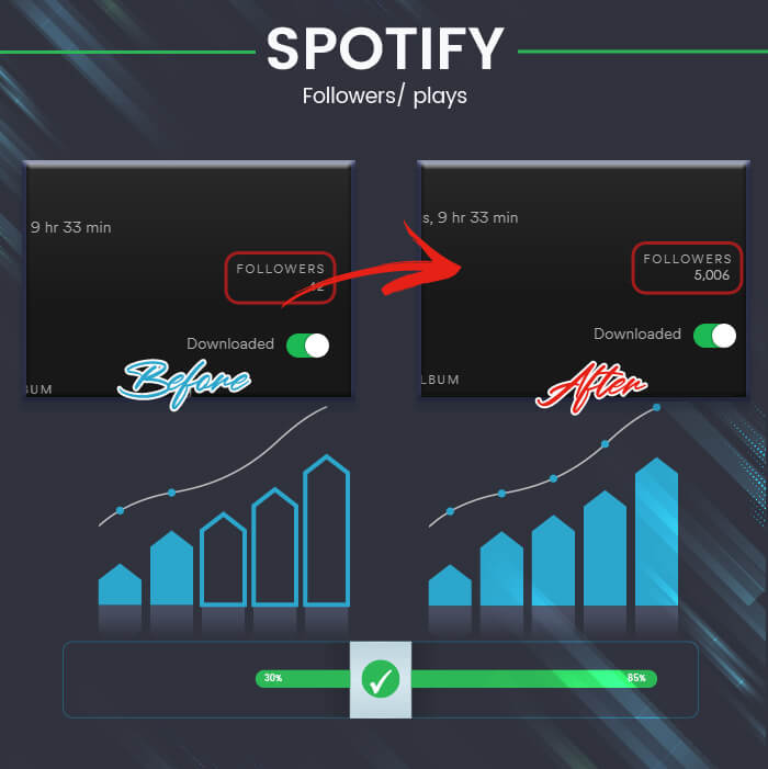 Spotify infographic-01