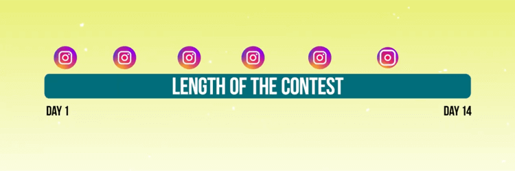 Disclose All Requirements and States of the Contest