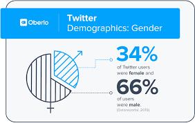 Twitter Demography