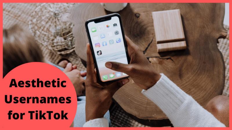 Aesthetic Usernames for TikTok