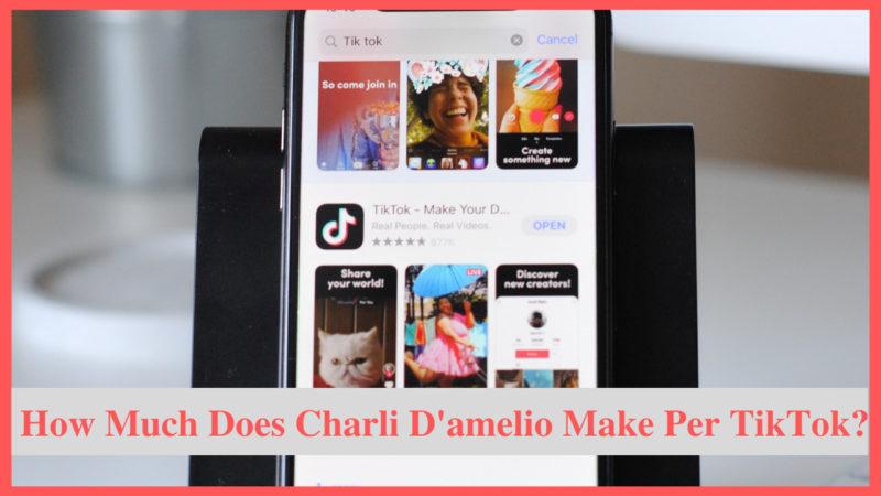 how much does charli d'amelio make per tiktok