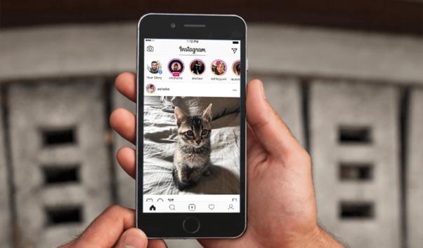 Woran man erkennt, ob jemand Sie blockiert hat, damit Sie seine Story auf Instagram sehen