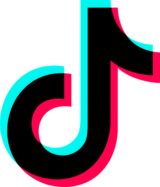 how to get more followers on tiktok without downloading apps