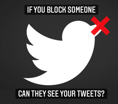 If You Block Someone On Twitter Can They See Your Tweets